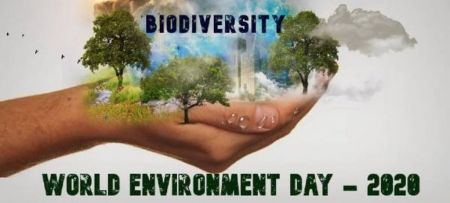 GEF Adriatic project partners celebrate the world environment's day