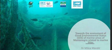 GEF ADRIATIC: virtual training on assessment of good environmental status regarding marine litter in Montenegro