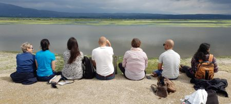 How can we save Mediterranean wetlands?